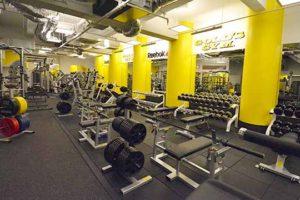 goldsgym ginza chuo